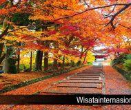 Tempat Wisata Musim Gugur di Jepang