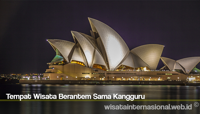 Tempat Wisata Berantem Sama Kangguru