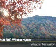 Edisi Tahun 2019 Wisata Kyoto